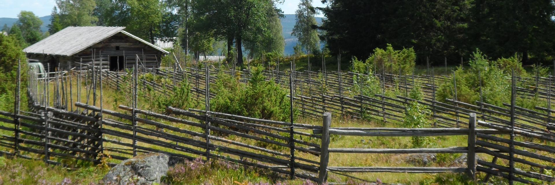 Beautiful setting in swedish folkloric region